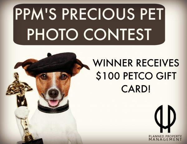 Chicago Apartments, Precious Pet Photo Contest