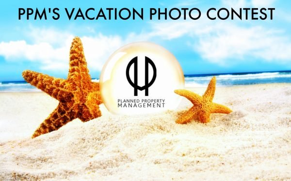Chicago Apartments, PPM's Vacation Photo Contest