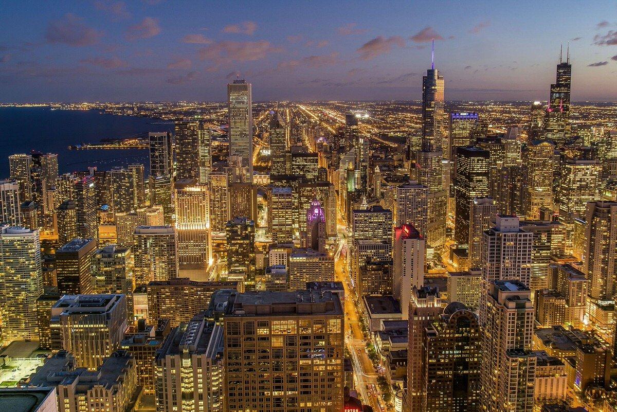 Chicago Apartments, Low Maintenance Houseplants